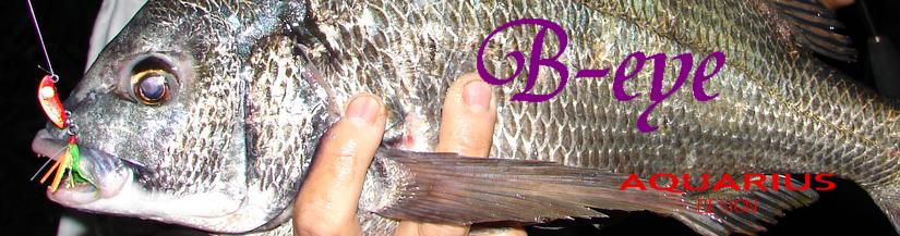 Shintowa 的玩具 B-eye-黑鯛根魚用路亞