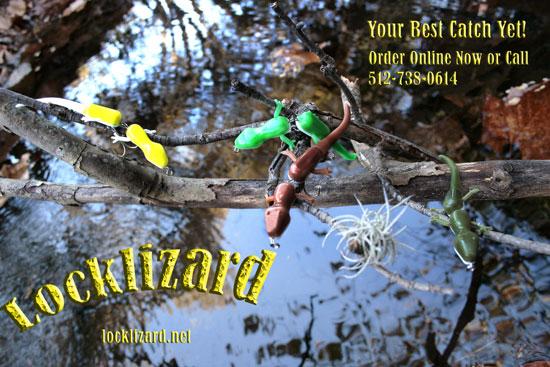 locklizard 超瞎的水表蜥蜴