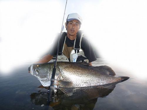ripple_fisher_monster_impact_redeye_1