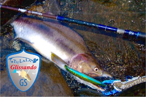Tulala Glissando 73 萬用型鮭魚竿