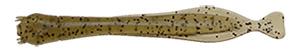 Jackson プランクトンシリーズ ヤムシ 浮游生物最高