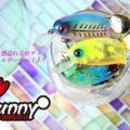 bunny_main21