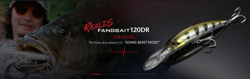 遠征攻略DUO REALIS FANGBAIT 120DR