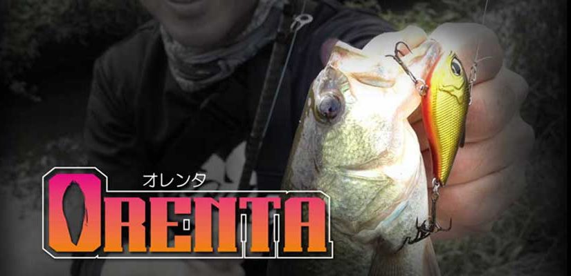 Geecrack  オレンタ/ORENTA 顫泳小飛俠