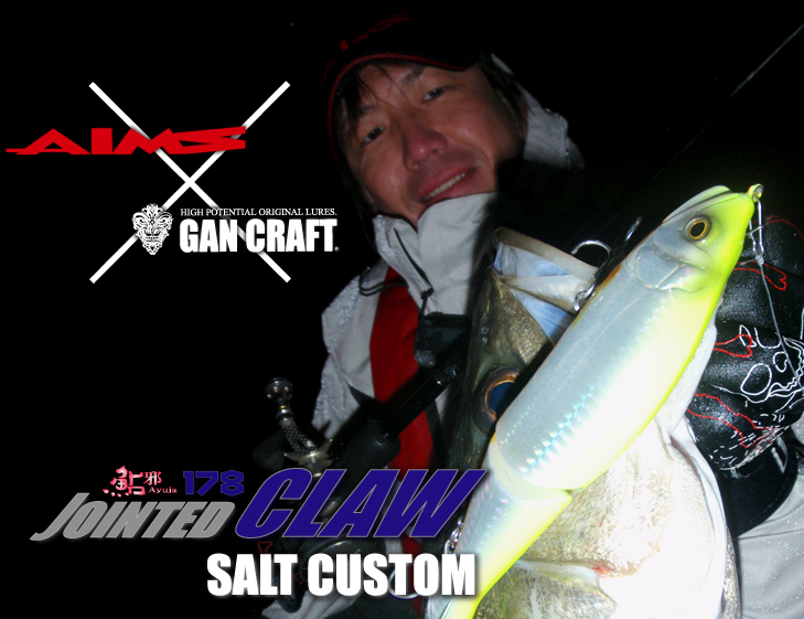 AIMS X GAN CRAFT JOINTEDCLAW 178 SALT CUSTOM 海鱸特製版