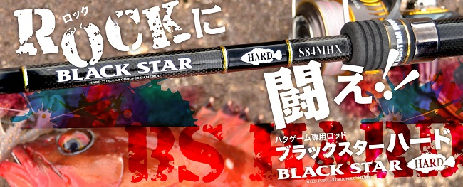 硬派黑星 XeSTA BLACK STAR HARD 大根魚竿